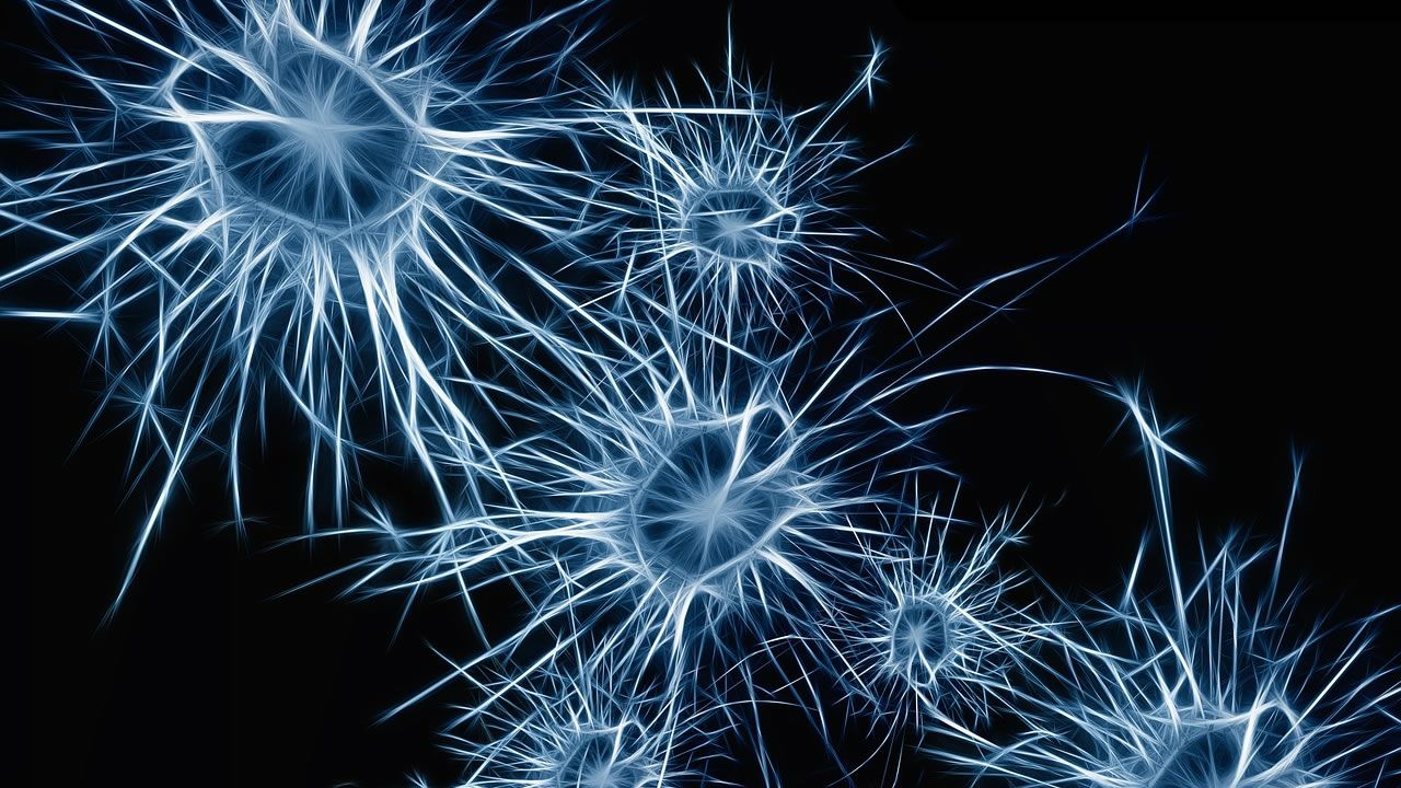 Científicos descubren que el Universo tiene Consciencia y usa las estrellas como neuronas