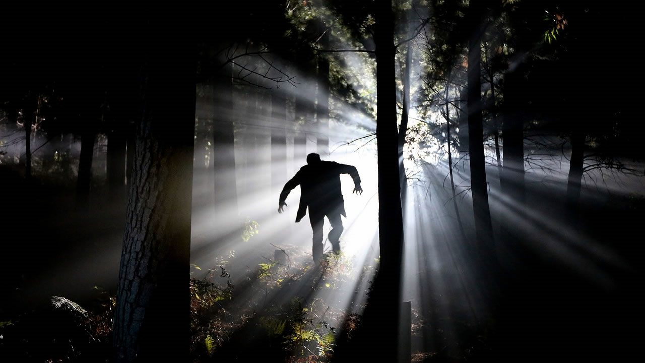 Estudio científico sugiere que los «vampiros» no son un mito