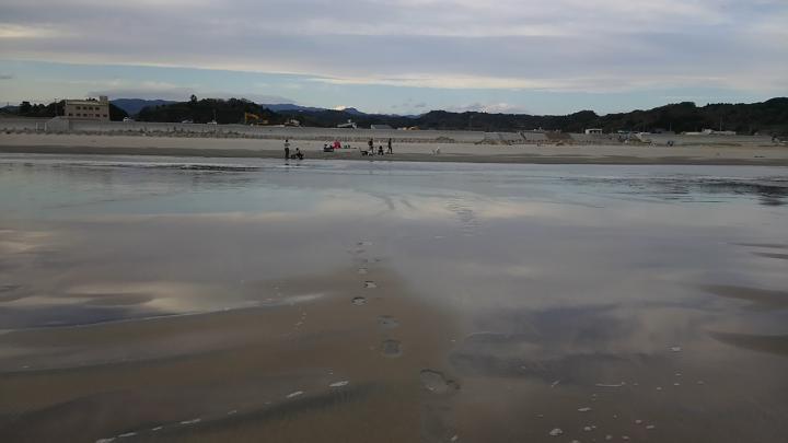 El equipo de investigación tomó muestras de ocho playas en Japón a 60 millas de la planta nuclear de Fukushima Dai-ichi y encontró altos niveles de cesio radiactivo descargado del accidente de 2011 en las aguas subterráneas salobres debajo de las playas. El cesio no constituye un problema de salud pública, pero ha mostrado cómo el material radiactivo puede ser transportado lejos de los sitios de accidentes, donde se adhiere y es almacenado por los granos de arena.