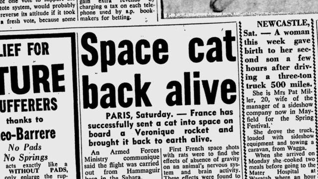 Un recorte del Sydney Morning Herald el 20 de octubre de 1963