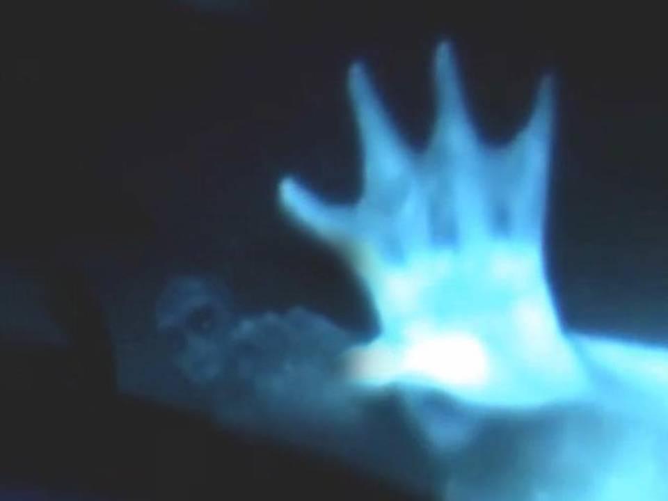 sirena marina