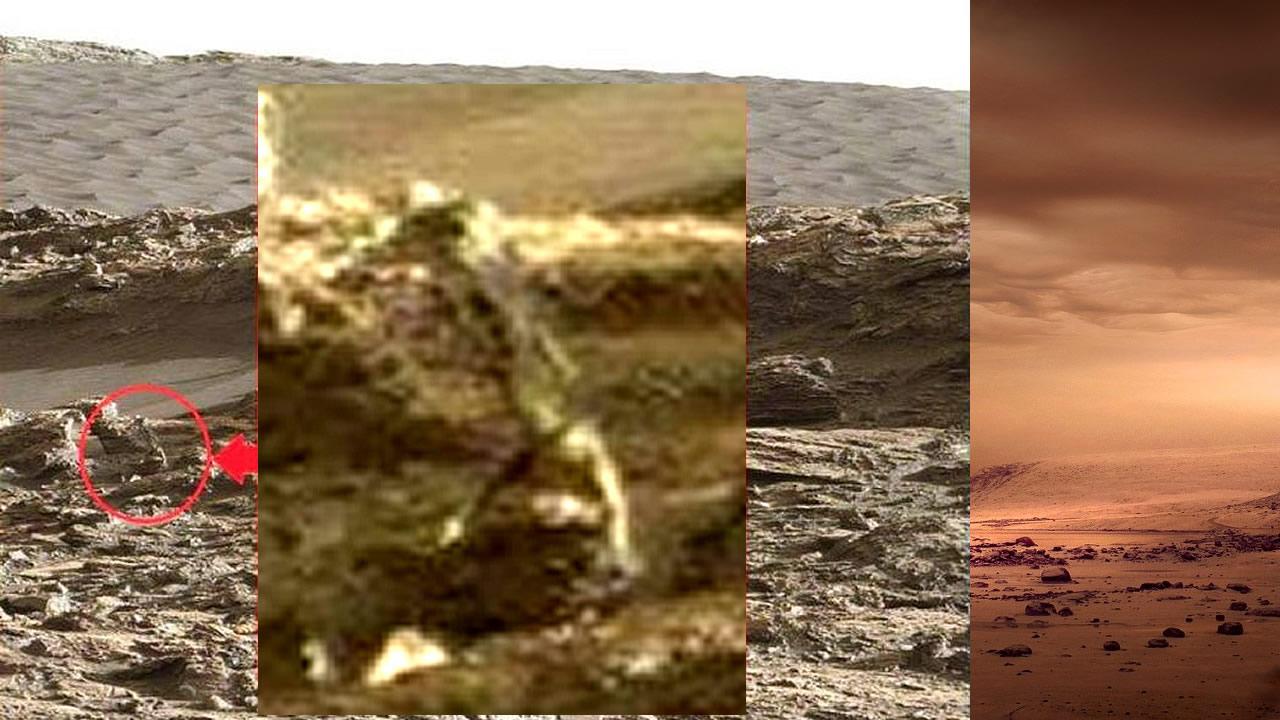 ¿Es esta la imagen de un ser vivo en Marte?