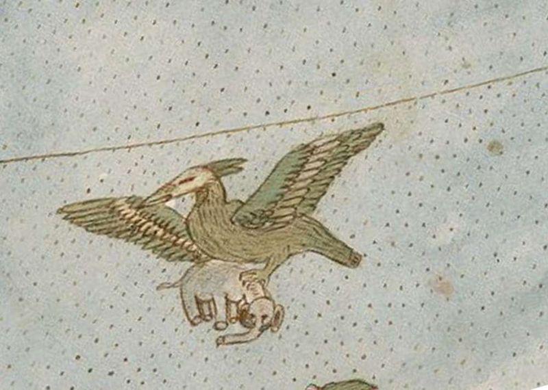 Un pájaro gigante se lleva un elefante en una parte del mapa