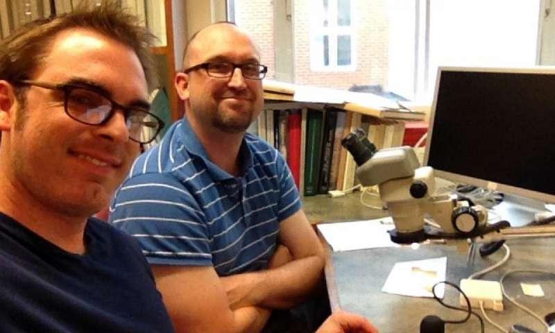 Geoffrey Smith (izquierda) y Brent Landau miran de cerca el fragmento griego identificado como el Primer Apocalipsis de Santiago