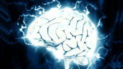 Investigación revela que el cerebro humano es capaz de «ver el futuro»