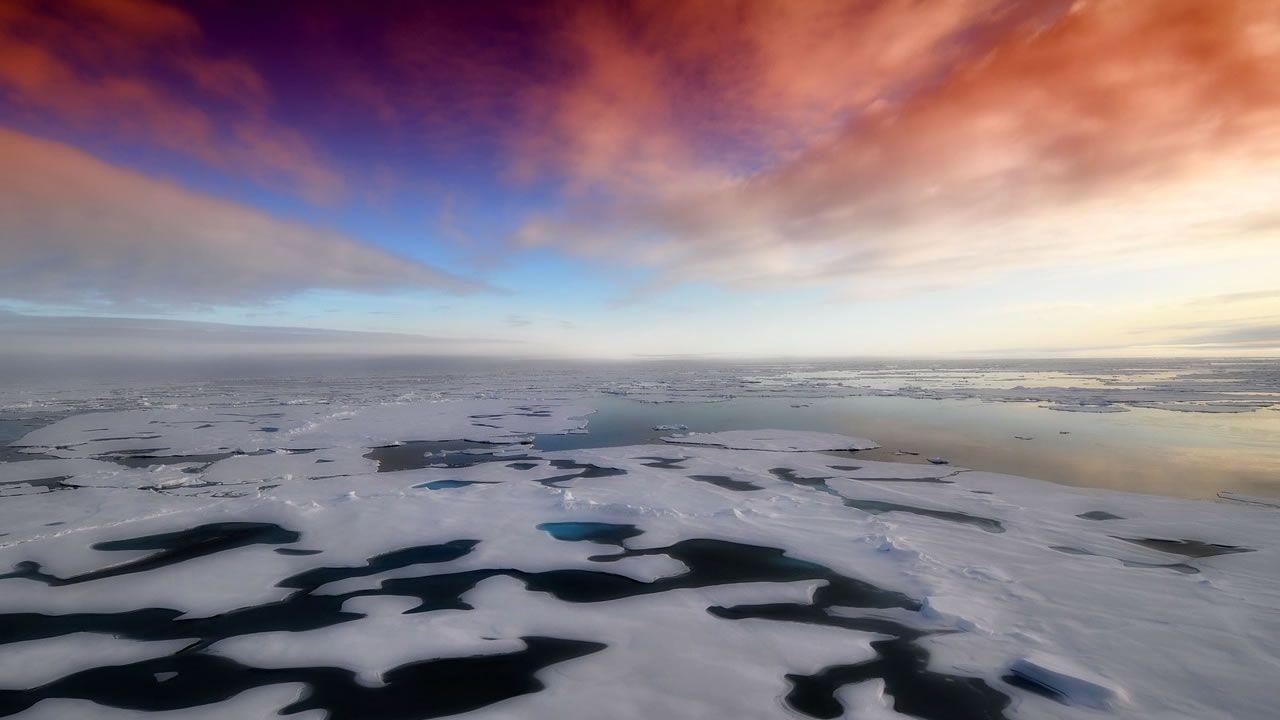 Descubren vida en las profundidades del Ártico y la Antártida