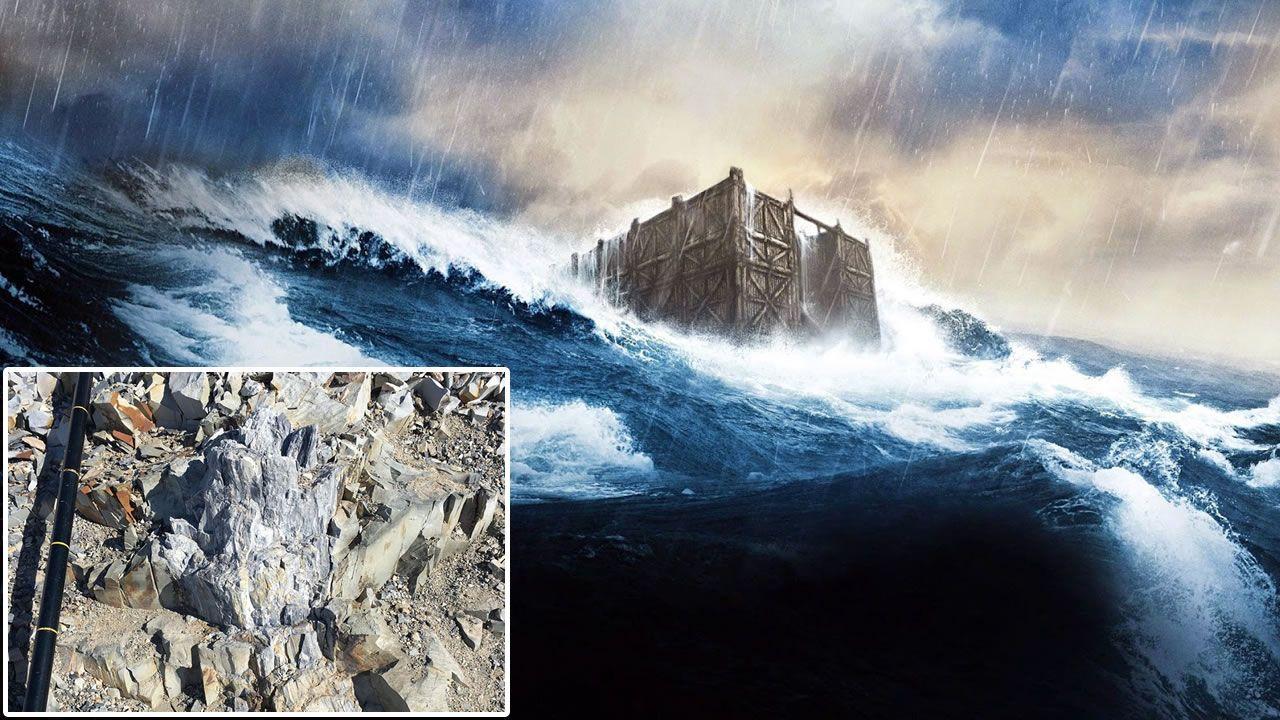 ¿Puede el Diluvio Universal explicar el bosque fosilizado encontrado en la Antártida?