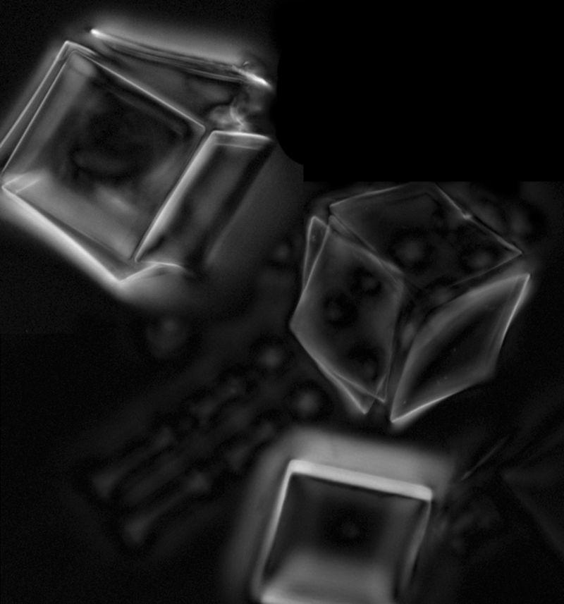 Bimorfos de grafeno y vidrio