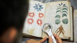 Científico dice haber descifrado el Manuscrito Voynich utilizando Inteligencia Artificial