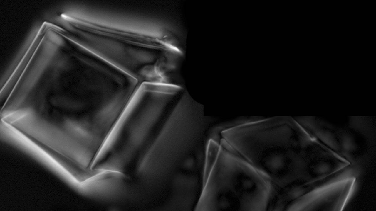 Científicos crean un nano-robot con exoesqueleto que puede cambiar de forma