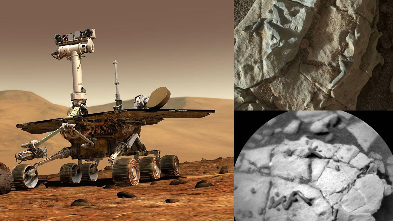 Hallan posibles fósiles en Marte, científico de NASA no descarta posibilidad