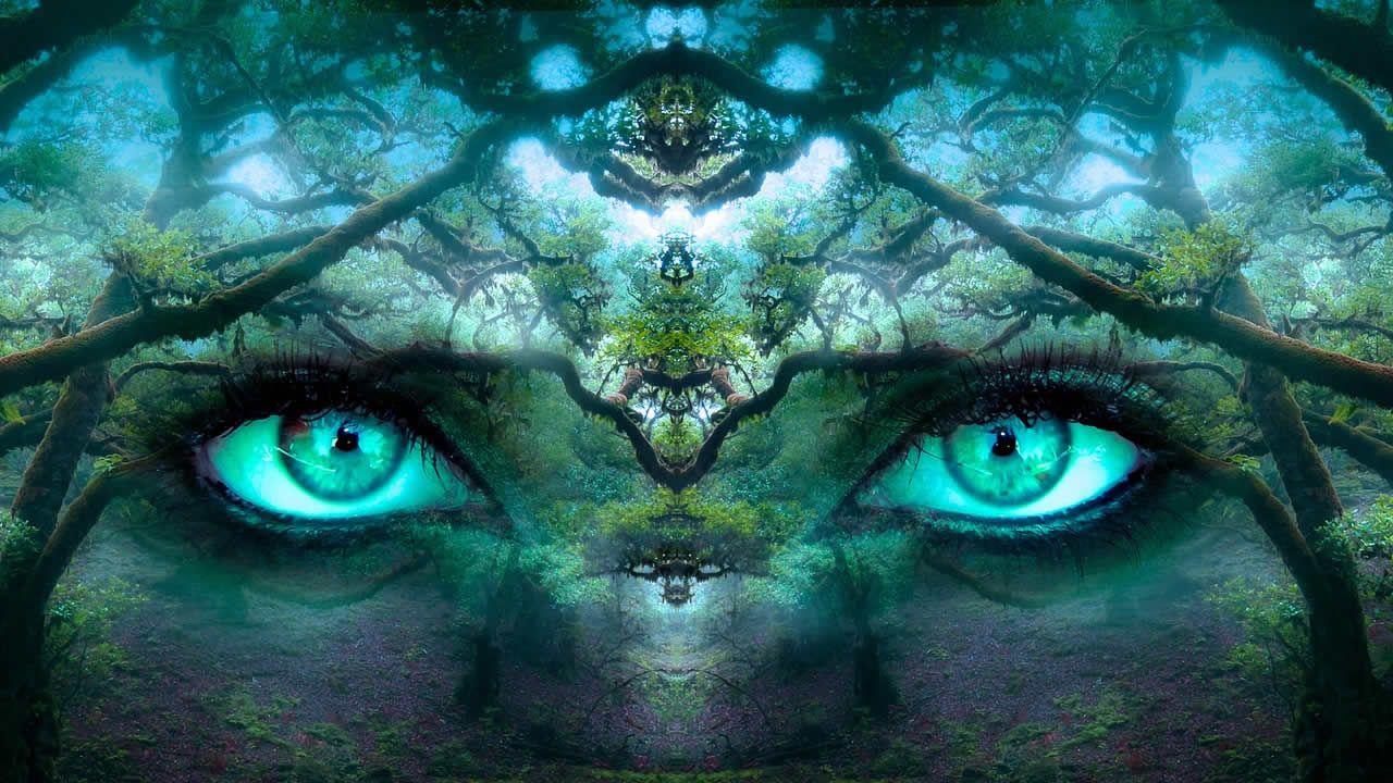 Científicos hallan el origen de la conciencia humana en el cerebro