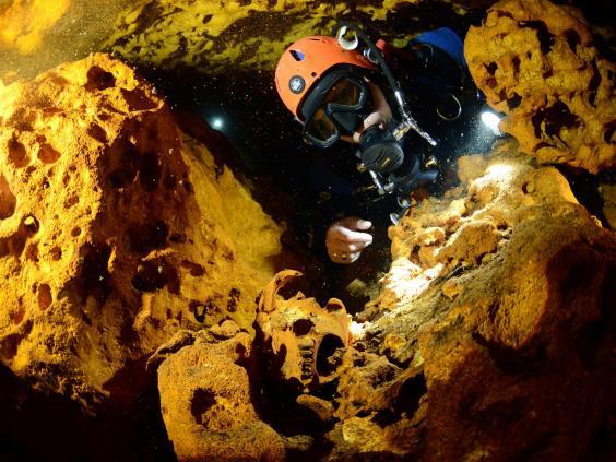 Un buzo observa un cráneo de animal en el sistema de cuevas subacuáticas Sac Actun durante la exploración