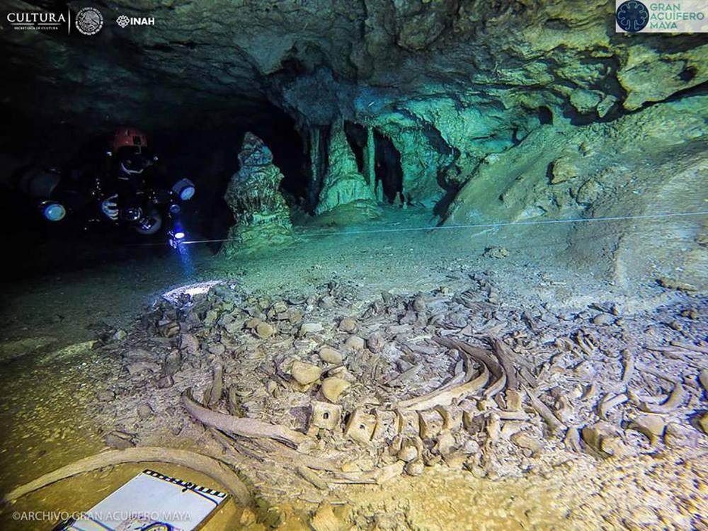 Los restos fósiles fueron encontrados dentro del sistema de cuevas más grande del mundo, Sac Actun, en México