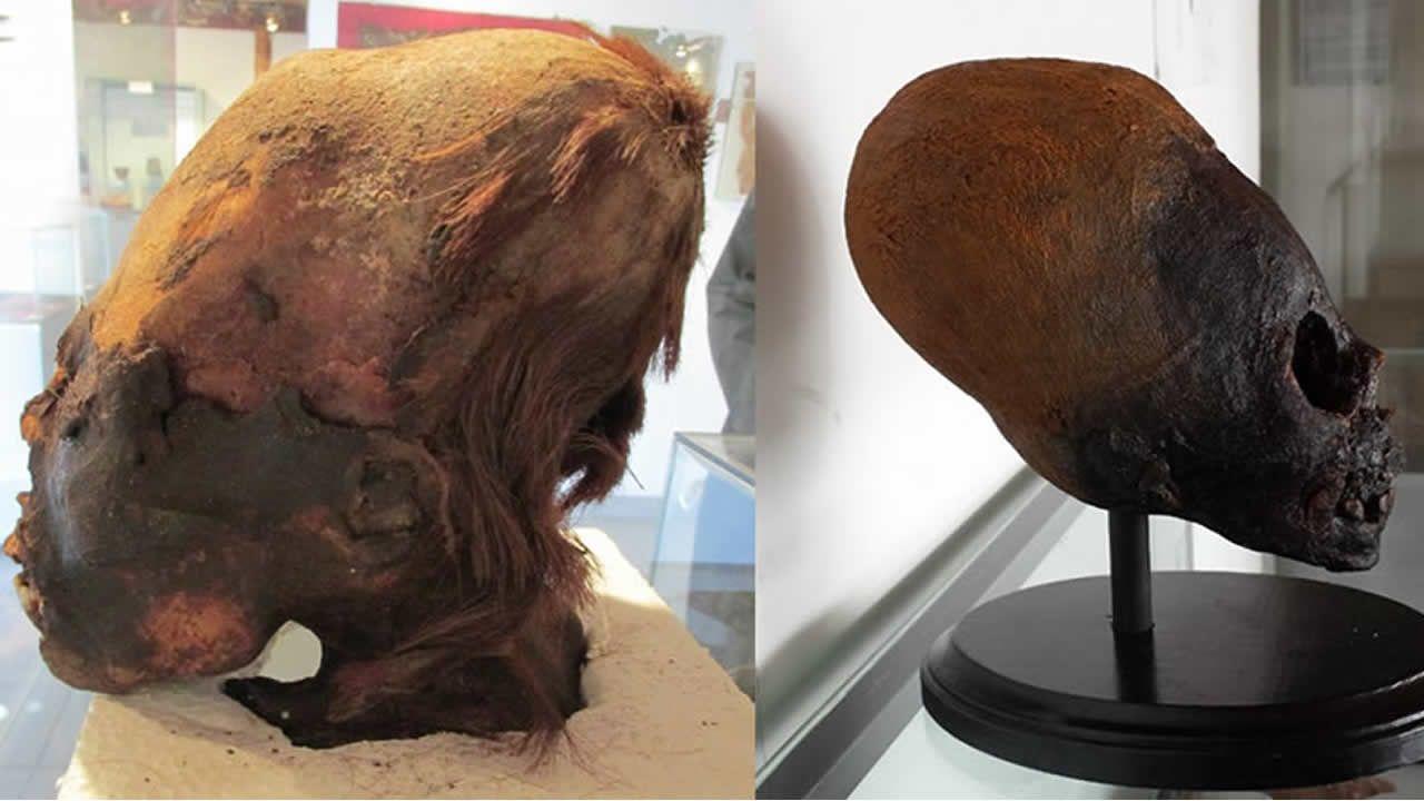 Resultados de ADN de cráneos alargados de Paracas sugieren diferencias con humanos modernos