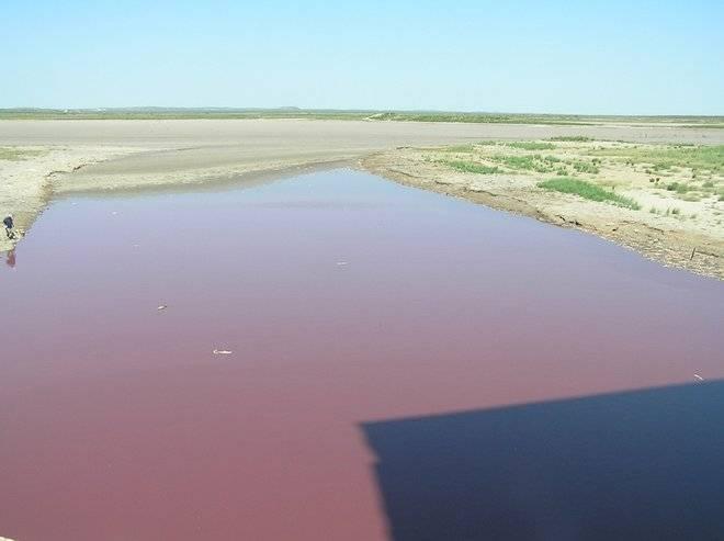 El lago que se volvió rojo en Texas provocó la titulares referidos a profecías bíblicas, incluso en revistas científicas como Live Science