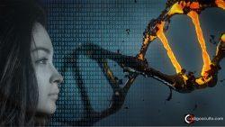 Científicos construyen un biocomputador hecho de células humanas vivas