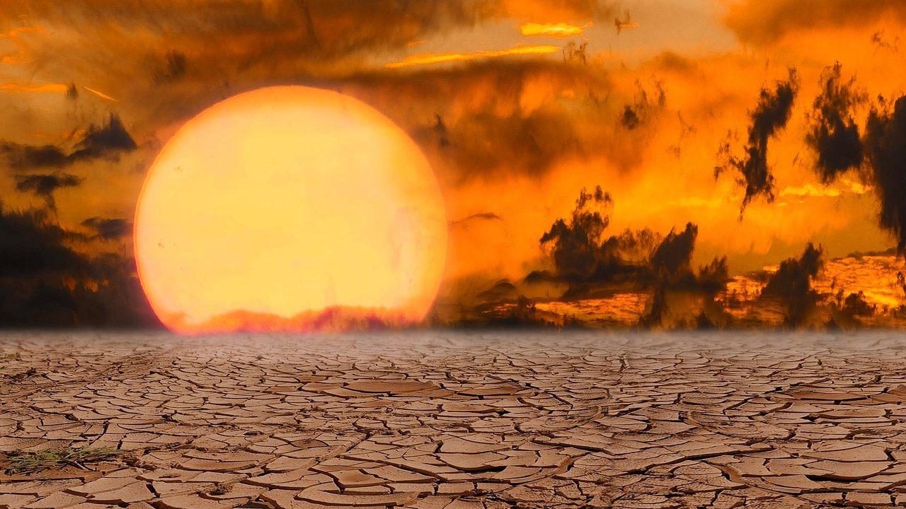 Encuentran señales de que una extinción masiva en la Tierra está ocurriendo ahora