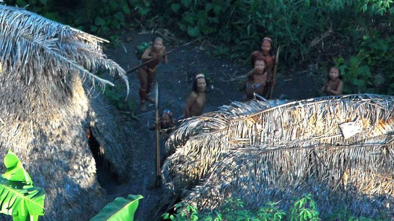 Más de 100 tribus «no contactadas» existen en aislamiento total de la sociedad global