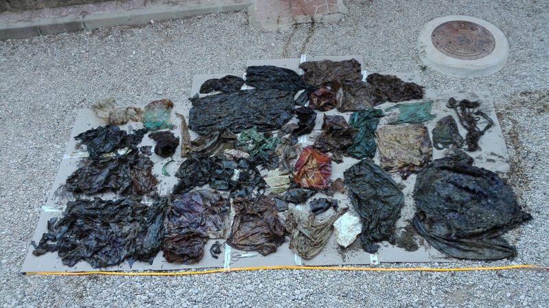 La autopsia realizada a un cachalote encontró 29 kilos de plástico en su estómago