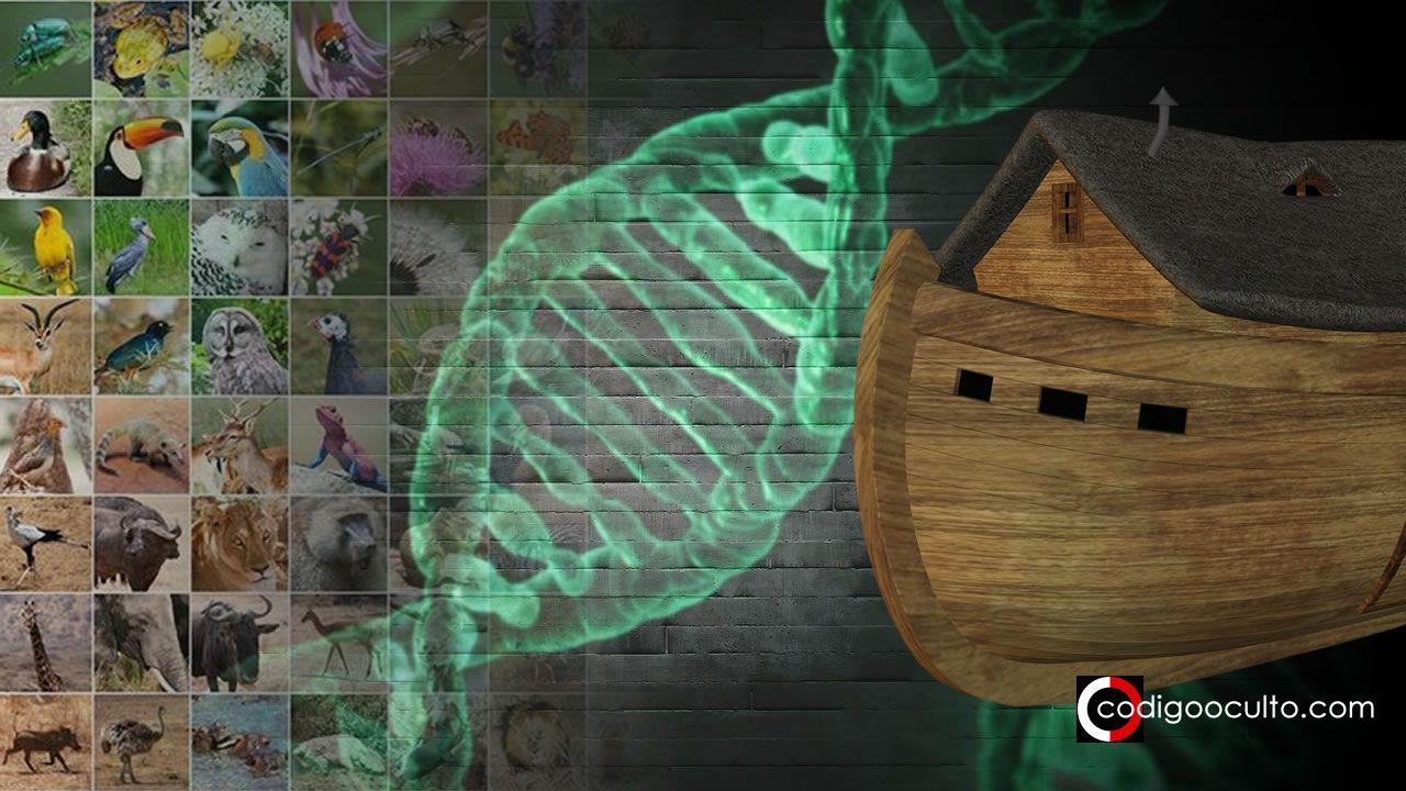 Científicos diseñan nueva «Arca de Noé» para almacenar el ADN de millones de especies
