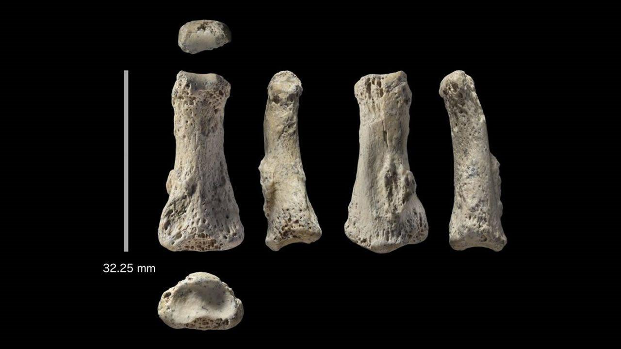 Hallan dedo de 90.000 años que podría reescribir la historia humana