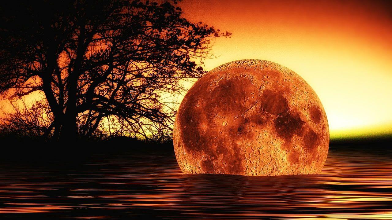 Hoy debía ocurrir el fin del mundo según David Meade, ¿qué pasó?