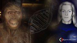 Los humanos son híbridos alienígenas, dice investigadora