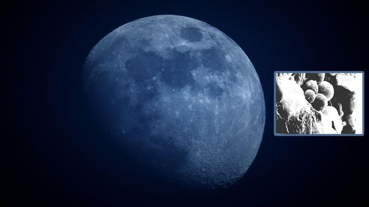 Rusia encontró vida extraterrestre en la Luna