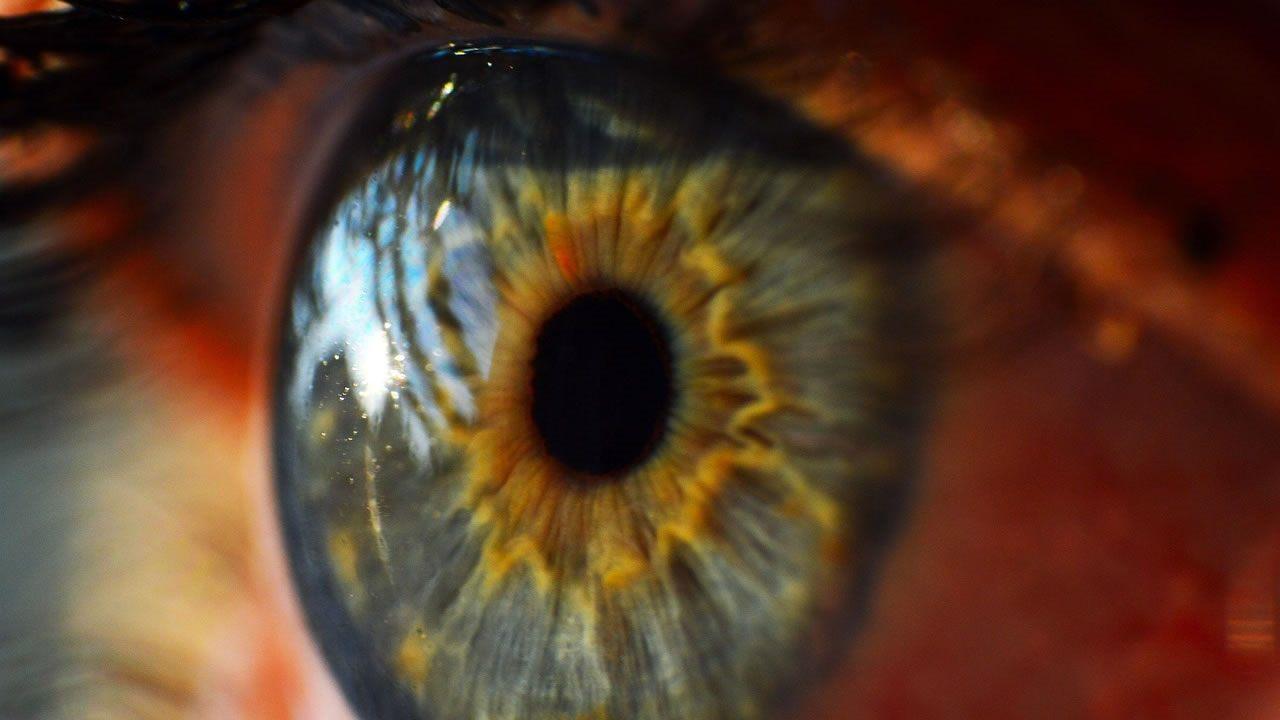 Científicos logran crear córneas humanas impresas en 3D