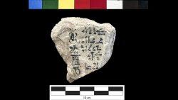 Hallan la posible versión más antigua de nuestro alfabeto