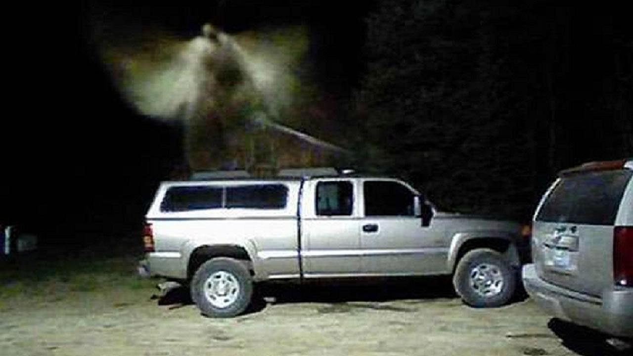 Misteriosa «criatura alada» aparece en fotografía en EE.UU.