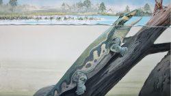 Algunos de los primeros animales en caminar por la Tierra vivieron en la Antártida, descubren científicos
