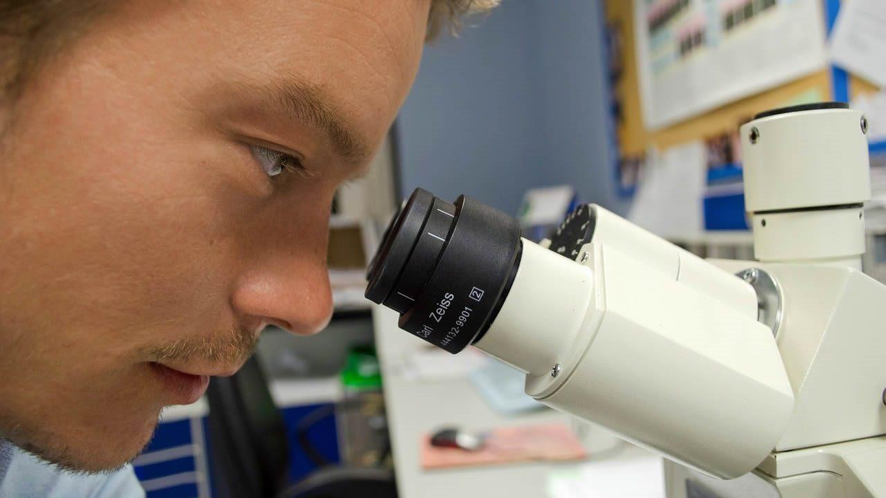 Científicos hallan más de 1.000 genes relacionados con la inteligencia