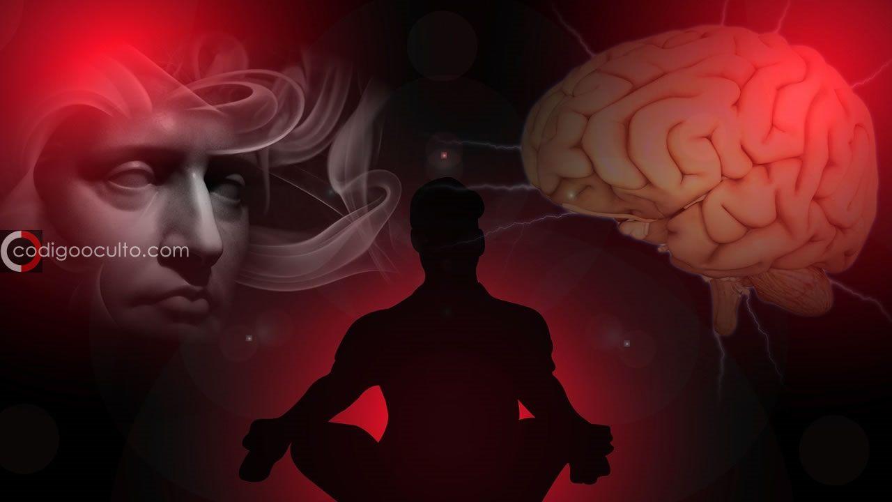 Científicos se acercan a descubrir el origen de la conciencia