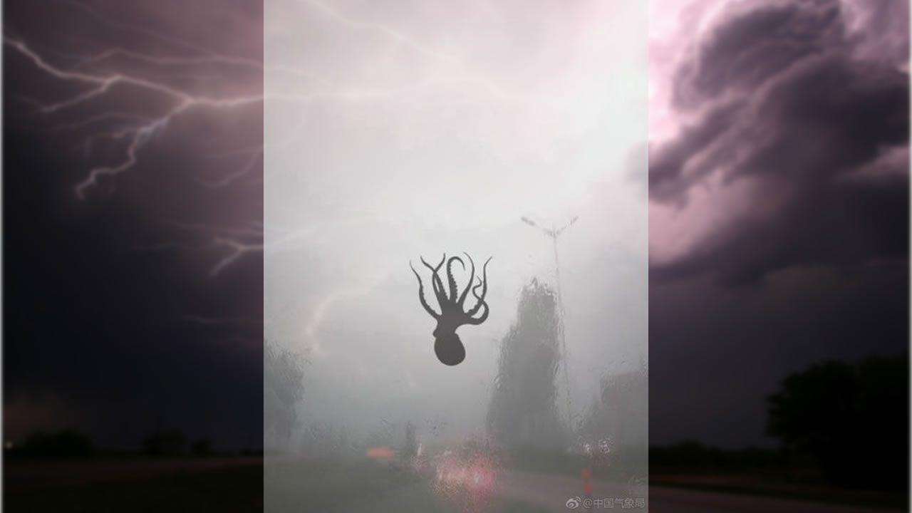 Grandes eventos atmosféricos y desastres naturales - Página 5 Cientos-de-criaturas-marinas-caen-del-cielo-durante-tormenta-en-china-portada