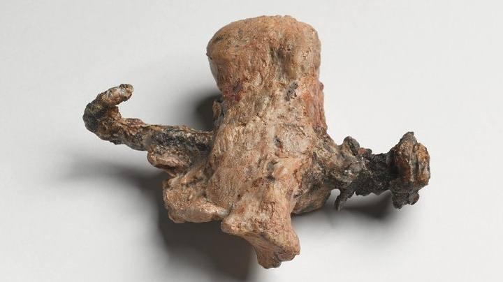 Hasta antes de este hallazgo, este talón con un clavo atravesado era la primera y única evidencia de una crucifixión.