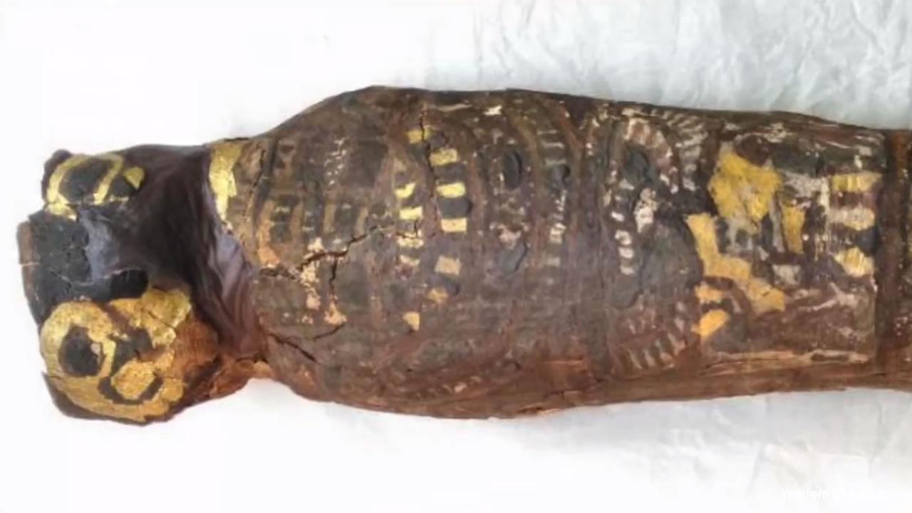 Este antiguo sarcófago egipcio contenía algo muy trágico