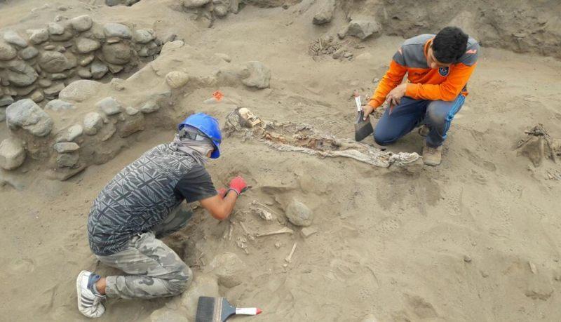 Los restos habrían sido enterrados entre los años 1200 y 1400 d.C.