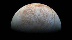 Vida extraterrestre podría existir a centímetros bajo la superficie de la luna Europa