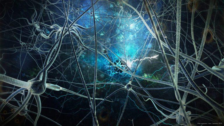 El control de las neuronas a través de la luz