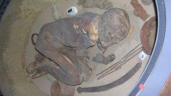 El embalsamamiento en el antiguo Egipto inició más de mil años antes de lo que se creía