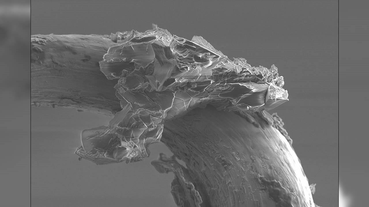 Este grano de roca extraterrestre es lo más extraño que verás hoy