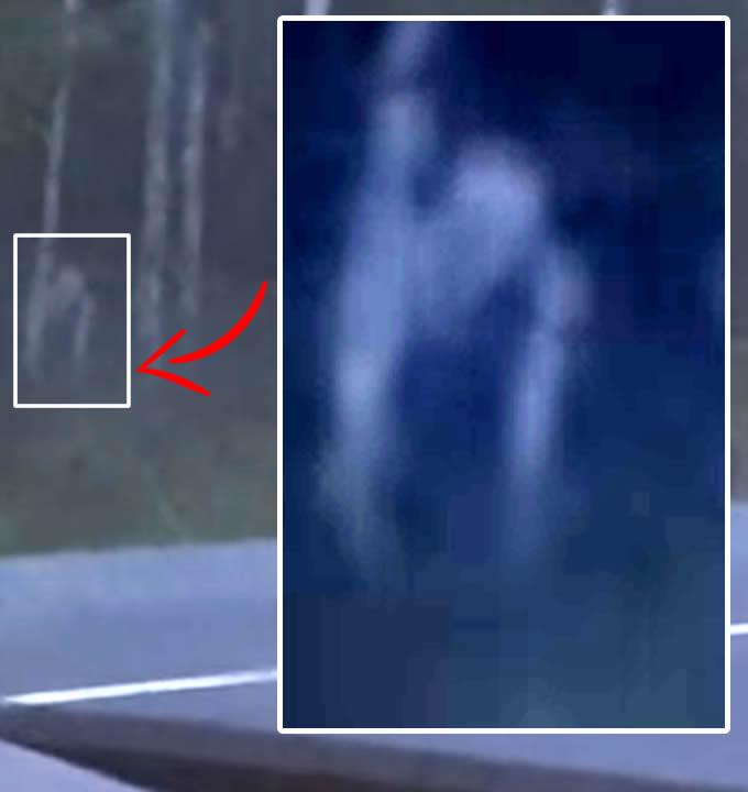Una captura de la extraña criatura grabada en vídeo