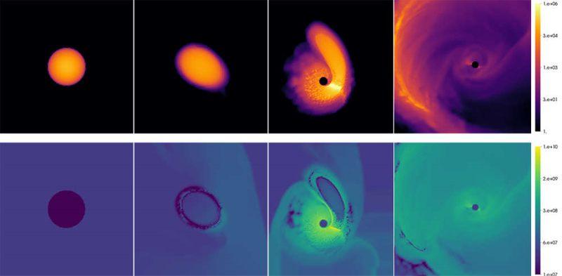 Aquí hay una simulación por computadora de una enana blanca que pasa cerca de un agujero negro.