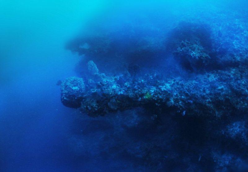 Estas estructuras horizontales son masivas, cada una mide hasta 91 metros, la longitud de un campo de fútbol americano. El explorador también encontró otras formaciones extrañas e inexplicables alrededor del objeto principal, todas las cuales están cubiertas de corales gruesos que él cree que tienen cientos si no miles de años.