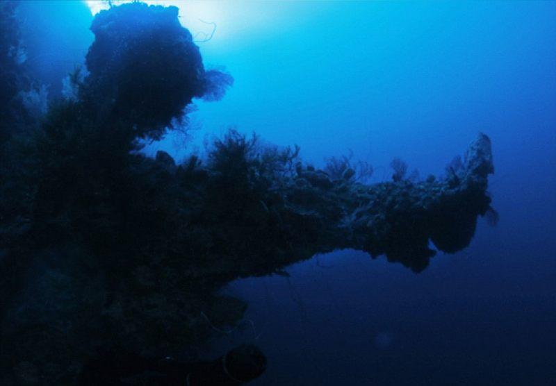 Aquí, lo que él describe como la sección sobresaliente de la supuesta nave. Según los científicos del equipo de Darrell, ningún coral del mundo podría crecer en esta formación de forma natural, tendría que haber una estructura subyacente para apoyar ese tipo de crecimiento.