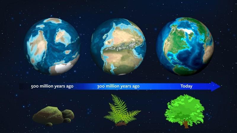 La historia natural de la Tierra ahora puede servir como una guía para que los astrónomos detecten exoplanetas. Hace unos 500 millones de años, este planeta tenía una firma de luz diferente debido al dominio del musgo. Hace unos 300 millones de años, los helechos dominaban, hoy en día plantas más complejas rigen la firma biológica de nuestro planeta