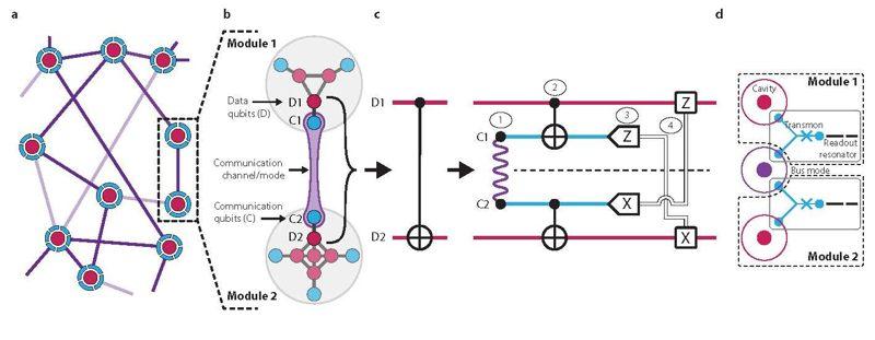 Descripción general de la red de la arquitectura cuántica modular demostrada en el nuevo estudio