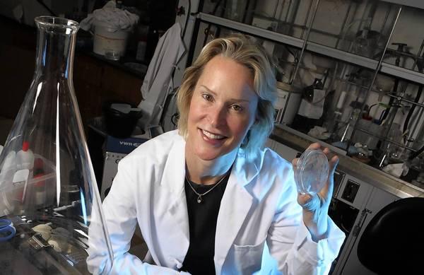 Frances Arnold en Princeton University